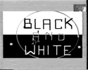 DVD Cover: Black and white (No more War - Version)